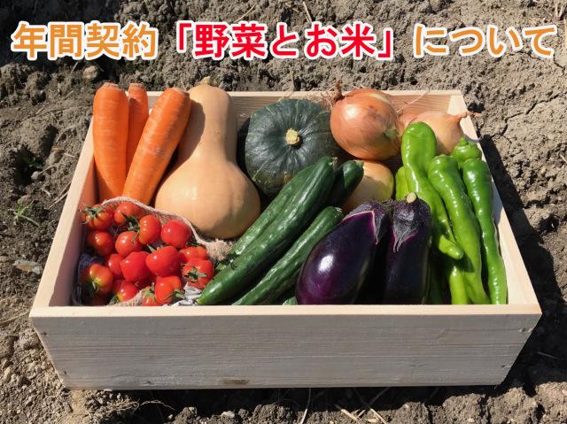 年間契約野菜
